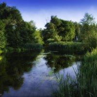 Река Псёл :: Дарина Колода