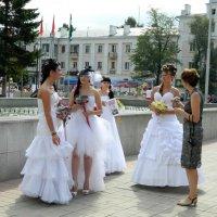 Невесты :: Вера Щукина