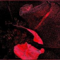 Лепестки розы :: Нина Корешкова