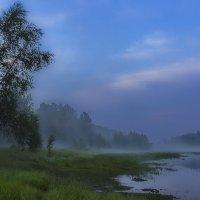 Туманный залив :: Анатолий Иргл