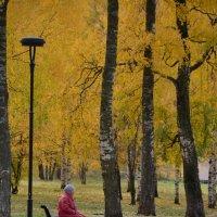 0сень :: Светлана Пантелеева