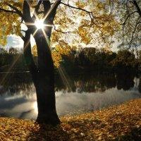 Осень в Лефортово. :: Дмитрий Воронин