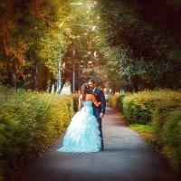 свадьба :: Zhanna Abramova