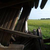 Широта земли русской из руин церкви :: Валерий Чепкасов