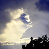 небесные видения :: vg154