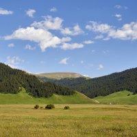 Лето в горах :: Сергей Рычков