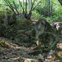По горным тропинкам :: leoligra