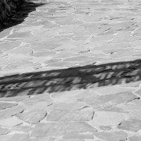 Across the shadow river :: Эрика Вольмонтт