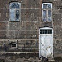Старый дом - старая собака... :: M Marikfoto