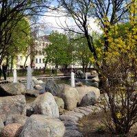 Сад камней :: Владимир Болдырев