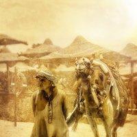 Белое солнце Египта.. :: Анна Булгакова