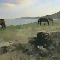 Крым :: alecs tyalin