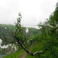 Путь к водопадам через преграды :: Любовь Иванова