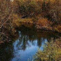 Тихая речка :: Черных Ксения