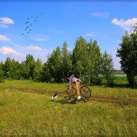 Чужая. :: Anatol Livtsov