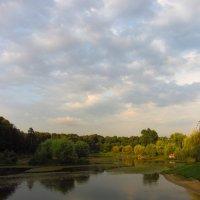 Июльский вечер на пруду :: Андрей Лукьянов