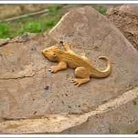 Песчаная ящерица :: Рамиль Хамзин