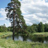 Филькино (Глухое) озеро :: Елена Павлова (Смолова)