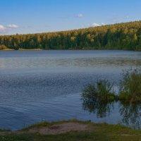 Залив :: vladimir Bormotov