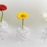 Бал цветов :: Светлана Л.