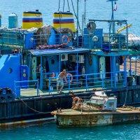 Морские будни. :: Геннадий Оробей