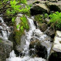 Вода,вода.Кругом вода... :: Любовь Иванова