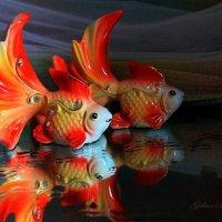 Золотая рыбка :: Галина Стрельченя