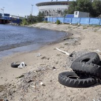 о проблемах экологии :: Евгения Мартынова