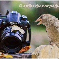 С днём фотографа!!! :: Андрей Поляков
