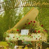 Цветочная выставка в Клину :: Галина Витушкина