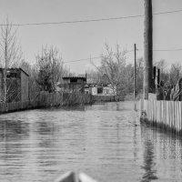 Затопило :: Александр Решетников