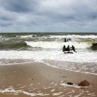 Море :: Женечка Зяленая