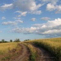 .. просто дорога... :: Александр Герасенков