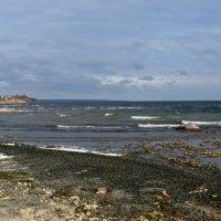 Осенний берег :: Natali
