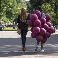 прогулки по парку :: Svetlana AS