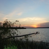 Днепровские закаты. :: Olga Grushko