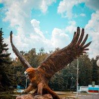 Орел в г. Орел :: Роман Хмелевской