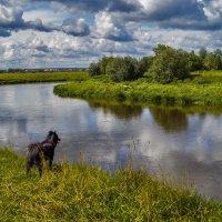 Там вдали, за рекой..... :: Андрей Дворников