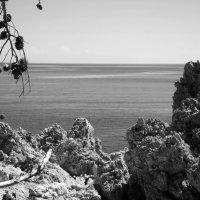 Скалистый берег :: Мария Кондрашова