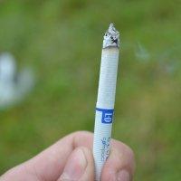 #cigarette :: Юра Мельников