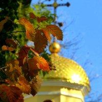 осень...листья...золото... :: Александр Прокудин