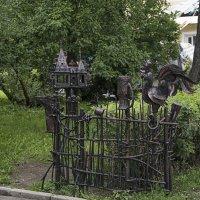 Железнывй забор :: Яков Реймер