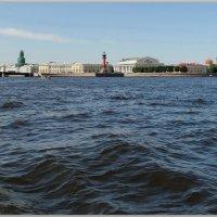 Нева,река. :: Владимир Гилясев