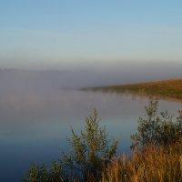 утро, у озера :: Алексей Сотников