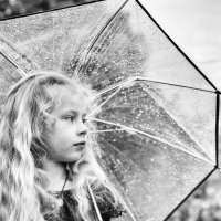 Оказалось, всем пригож этот добрый, летний дождь :: Ирина Данилова