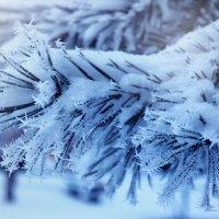 Зимнее волшебство :: Алёна Белянина