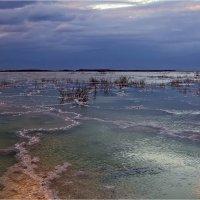 Рассвет ... Мёртвое море ... :: Валентина Булкина