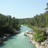 Горная река :: Светлана Телегина