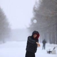 апрель, зима :: Елена Кряжева