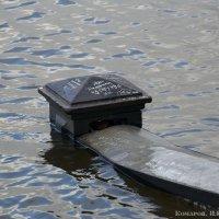 Таганрог уходит под воду :: Игорь Комаров